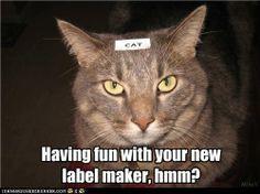 Label maker.....