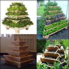 #garden #innovation