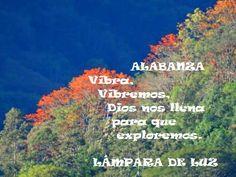 Alabanzas: Monte Aguacate