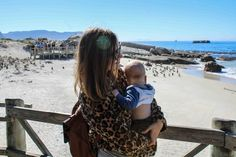 On the weekend we decided to go visit the penguins at boulders beach. These little penguins just seem so strange on the beach, they should be in snow frolicking around, not rolling around on the b… Boulder Beach, Sober, Cape Town, Bouldering, Penguins, To Go, Penguin