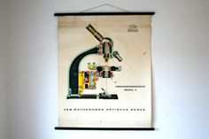 Vintage German Classroom Poster Love this one - the graphical image looks great as a wall hanging    Published by Rathenow  Silkscreened on paper,