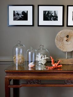 Love this idea for displaying fragile (or dust-prone) decor