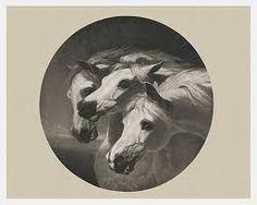 Three Horses Heads Horse Painting Horse Art Horses