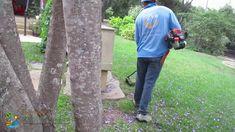 Lawn mowing With Professional garden services in Santa Barbara, CA. Garden Maintenance, Santa Barbara, Youtube, Yard Maintenance, Youtubers, Youtube Movies