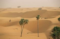 Deserts in Africa   Photograph by: Pascal Maitre, National Geographic April 2008