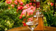 White Wine Woodinville