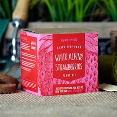 Grow Your Own White Alpine Strawberries Plant Kit by Plants From Seed, the perfect gift for Explore more unique gifts in our curated marketplace. Strawberry Seed, White Strawberry, Strawberry Plants, Alpine Strawberries, Wooden Pencils, Grow Kit, Plant Markers, Grow Your Own, Christmas Sale