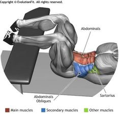 ABDOMINALS -  CRUNCH LEGS ON FLAT BENCH