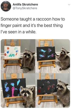 Untitled Funny Animal Memes, Stupid Funny Memes, Funny Relatable Memes, Cute Little Animals, Cute Funny Animals, Funny Cute, Hilarious, Cute Stories, Animals And Pets