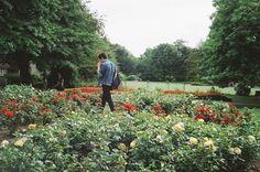 Imagen de boy, flowers, and photography