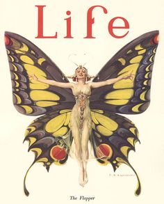 vintage Life butterfly cover