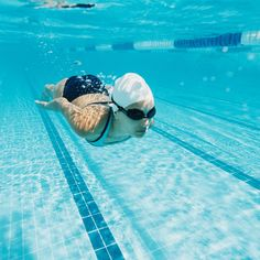 These structured swim workouts are perfect for both beginner swimmers and seasoned mermaids. Find the right swimming workout plan for you and dive right in. #cardio #pool #swimming Split Squat Jumps, Jump Squats, Side Lunges, Swimming Workouts For Beginners, Kickboxing Moves, Lap Swimming, Swimming Tips, Inner Thigh Lifts, Frases