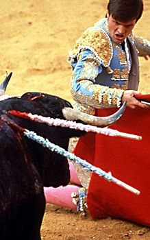 Bullfighting is a cruel sport that pits a bull against men who wield a variety of weapons. Read about it and help put an end to bull torture for entertainment purposes!