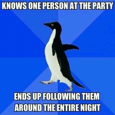 Socially Awkward Penguin... This is why I don't go to parties.