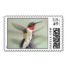 Ruby-Throated Hummingbirds Postage Stamps.  What a cool idea to put a hummingbird on a stamp!