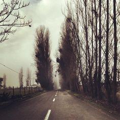 Esa es la gracia de recorrer, no sabes que te depara el camino ☺️ #Talca #Talcagram #PicOfTheDay #Agosto #August #Martes #Tuesday #Invierno #Winter #Camino #Road #Trabajo #Work #Arboles #Tree #Paisaje #Landscape #RegionDelMaule #Chile # #