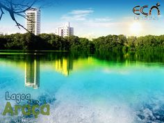 Lagoa do Araçá III