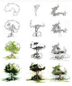 Ideas Tree Architecture Sketch For 2019 Landscape Architecture Drawing, Watercolor Architecture, Landscape Sketch, Landscape Drawings, Landscape Design, Sketch Architecture, Romanesque Architecture, Cultural Architecture, Tree Sketches