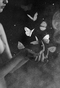 Hundreds of butterflies flitted in and out of sight like short-lived punctuation marks in a stream of consciousness without beginning or end • Haruki Murakami, 1Q84