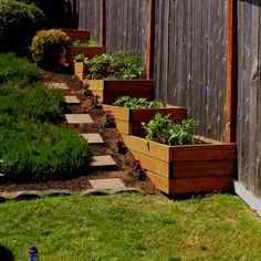 Raised garden beds for those of us with sloped yards.                                                                                                                                                      More