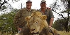 An American dentist just lured Cecil, a protected African lion, out of a national park in Zimbabwe, shot him, beheaded and skinned him. If we don't stop this kind of killing the African lion could be extinct in decades. The first step to save lions is to list them under the Endangered Species Act, right now. Sign and share widely: