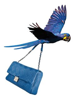 Versace Stitching Couture Accessories Line  Shop now at: http://shop.versace.com