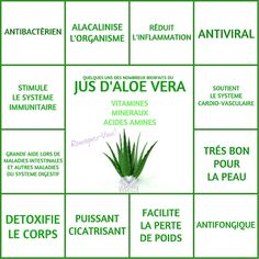 Aloe Vera: its benefits for health and beauty! - All roads lead to health! Health And Nutrition, Health Tips, Health Fitness, Nutrition Guide, Herbalife Nutrition, Child Nutrition, Healthy Diet Plans, Healthy Life, Healthy Eating