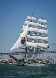 Pictures from the Port of Lisbon, Crew Parade, Parade of Sail and finally the Raceitself I don't think I've ever seen a better parade of sail, it was absolutely phenomenal ! The wind …