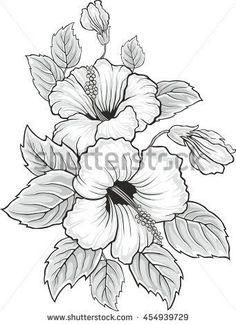 stock-vector-blooming-beautiful-hibiscus-flower-hawaii-symbol-card-or-floral-bac. - stock-vector-blooming-beautiful-hibiscus-flower-hawaii-symbol-card-or-floral-background-for-invitati - Coloring Pages For Grown Ups, Flower Coloring Pages, Colouring Pages, Hibiscus Flower Drawing, Hibiscus Flowers, Flower Art, Drawing Flowers, Flower Ideas, Fabric Painting