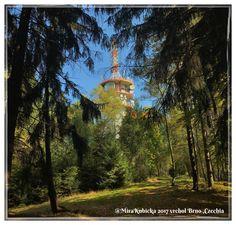#vrcholbrno #brno #nature #forest #autumn #vylet #cestovani #turista #travel #retroturistika #turistika #trip #adventure #explore #czechia #visitCzechia #visitcz #2017
