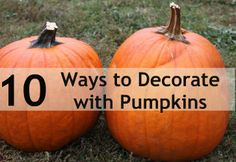 Today is Day 3 of my 10 day series, Family Friendly Fall!  It's time to have some fun decorating your homes with pumpkins. If you'd like to see what I offer on the other days, go to my Family…
