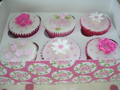 Cute cupcakes for everybody