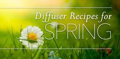 Diffuser Blends: SPRING Diffuser Recipes, And Just Like That, Spring Has Sprung, Diffuser Blends, Young Living Essential Oils, Breathe, Bloom, Things To Come