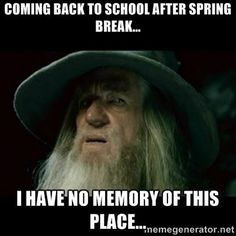 13 Best Spring Meme Images Spring First Day Of Spring Spring Meme