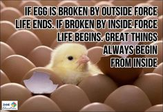Inspiration & Motivation 1 from Zane Education at http://www.zaneeducation.com