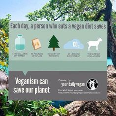veganism can help save our planet #vegan