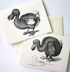 dodo birds.