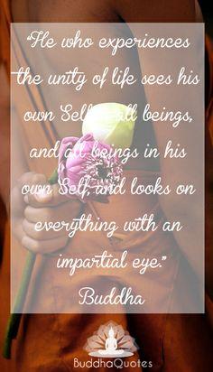 Buddha Quotes Archives | BuddhaQuotes.com.auBuddhaQuotes.com.au