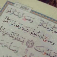 مسلم و أفتخر .