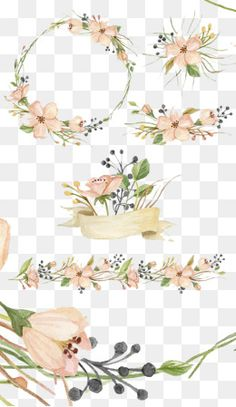 رسمت باليد الزهور, زهرة, ألوان مائية, صغير جديد PNG و PSD