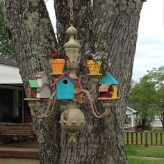 Birdhouse condo from old chandelier.