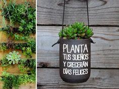 Una macerta creativa e inspiracional que puedes hacer tu misma para decorar tu oficina. Tener plantas te hace sentir más relajada.