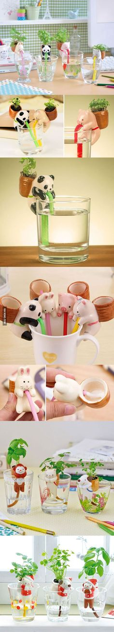 Cute Self-Watering Animal Planters - 9GAG
