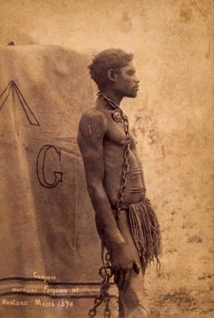 Cumjam, an Aboriginal man accused of murdering Ferguson at Mentana, standing chained by the neck to a tree, Queensland, March Photographed by Alphonse Chargois Aboriginal Language, Aboriginal Man, Aboriginal Culture, Aboriginal People, Australian Aboriginal History, Australian Aboriginals, Bird People, Dark Roots, Indigenous Art