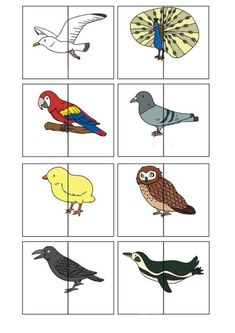 nl , animal match for preschool, free printable animals silly animals animal mashups animal printables majestic animals animals and pets funny hilarious animal Preschool Learning Activities, Animal Activities, Free Preschool, Preschool Activities, Teaching Kids, Kids Learning, Animal Puzzle, Bird Theme, Bird Crafts
