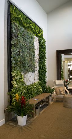 A plant wall! Would be SO cool to have