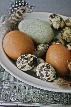VIBEKE DESIGN: Beautiful Eggs