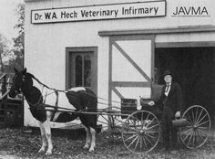 Dr. John W. Carey readies a buggy he restored for the Living History Veterinary Infirmary, which the Iowa VMA dedicated in October 1977 in Des Moines. This was just one of several veterinary museums created by state veterinary medical associations during this period. https://www.avma.org/News/JAVMANews/Pages/151001i.aspx?utm_source=pinterest&utm_medium=socmed&utm_campaign=vethistory