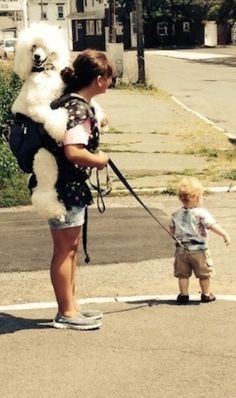 Just Going for a Walk: Son on Leash, Poodle Riding Piggyback. WTF Strange! - Best Funny Pictures Walmart Humor Fail Jokes