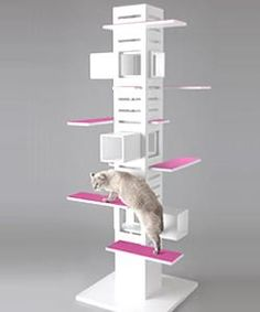 i need to make this for my cats / vets office (: